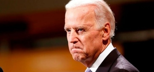 Nearly %70 American Muslims vote for Democratic candidate Biden